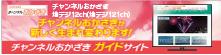 ■チャンネルおかざき 岡崎市の提供する市政チャンネル【チャンネルおかざき】の番組ガイドのホームページです。